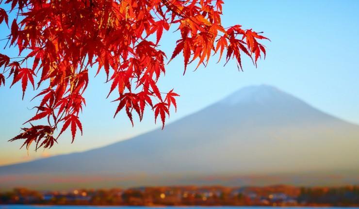 Japonské systémy kvality, quality